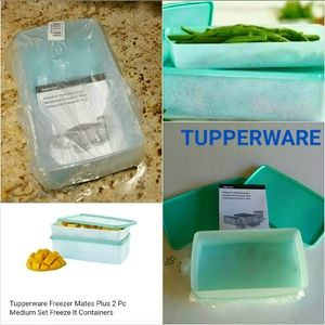 Tupperware Freeze-It Plus Set 2 Snowflake Pattern